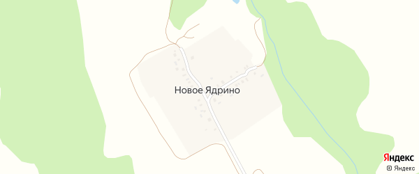 Шоссейная улица на карте деревни Новое Ядрино с номерами домов
