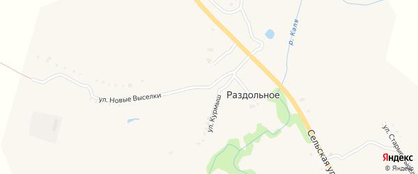Улица Старые Выселки на карте Раздольного села с номерами домов