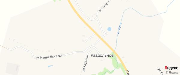 Улица Капро на карте Раздольного села с номерами домов