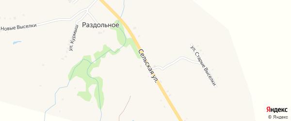 Сельская улица на карте Раздольного села с номерами домов
