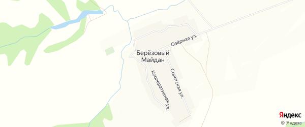 Карта села Березового Майдана в Чувашии с улицами и номерами домов