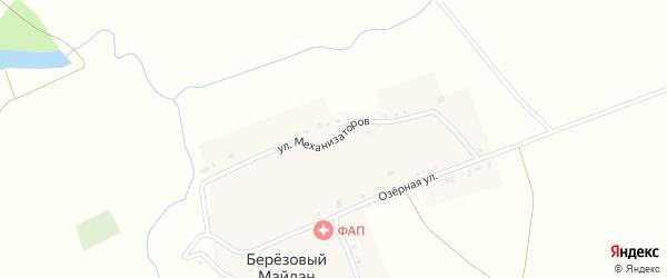 Улица Механизаторов на карте села Березового Майдана с номерами домов