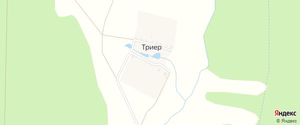 Грунтовая улица на карте поселка Триера с номерами домов