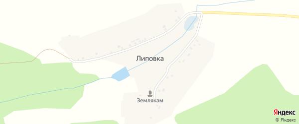 Улица Блюхера на карте деревни Липовки с номерами домов