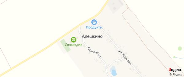 Переулок Никитиных на карте деревни Алешкино с номерами домов