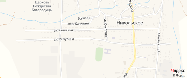 Улица Мичурина на карте Никольского села с номерами домов