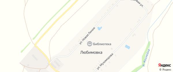 Улица Новая Линия на карте села Любимовки с номерами домов