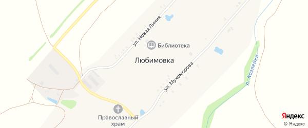 Улица Мухоморова на карте села Любимовки с номерами домов