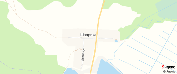 Карта деревни Шадрихи в Чувашии с улицами и номерами домов