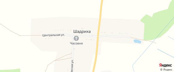 Центральная улица на карте деревни Шадрихи с номерами домов