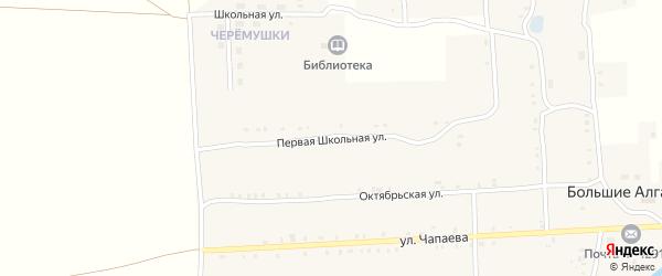Школьная 1-я улица на карте села Большие Алгаши с номерами домов