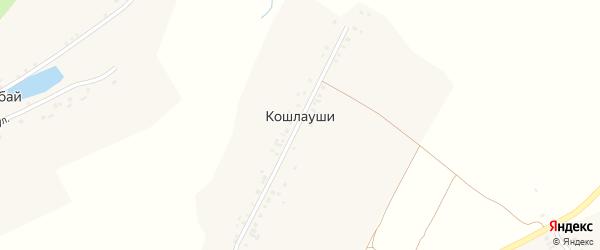 Центральная улица на карте деревни Кошлаушей с номерами домов