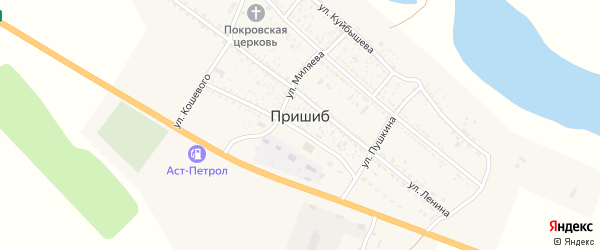 Молодежная улица на карте села Пришиба с номерами домов