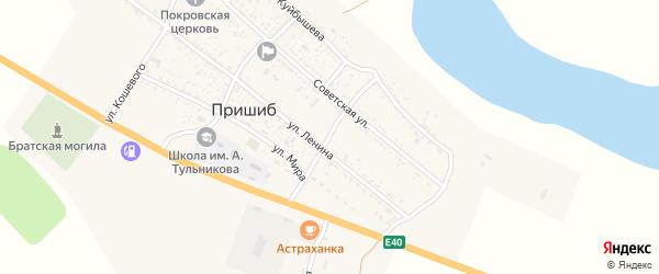 Улица Пушкина на карте села Пришиба с номерами домов
