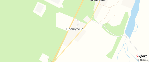 Карта деревни Прошутино в Архангельской области с улицами и номерами домов