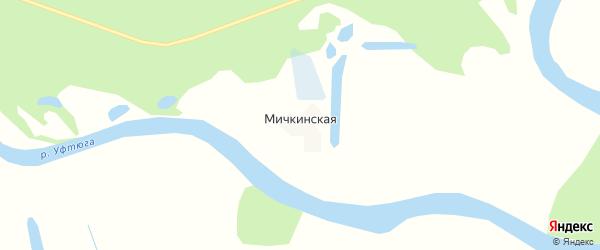 Карта Мичкинской деревни в Архангельской области с улицами и номерами домов
