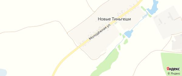 Молодежная улица на карте деревни Новые Тиньгеши с номерами домов
