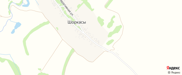 Зеленая улица на карте деревни Шоркас с номерами домов