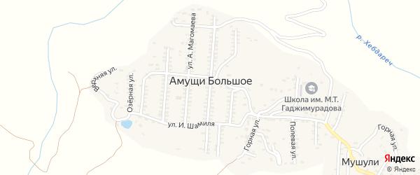 Центральная улица на карте села Амуши с номерами домов