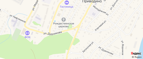 Улица Генерала Дудникова на карте поселка Приводино с номерами домов