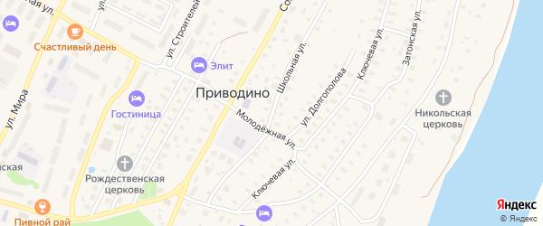Школьная улица на карте поселка Приводино с номерами домов