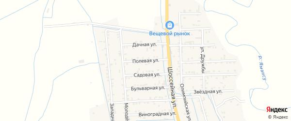 Полевая улица на карте села Боташюрта с номерами домов