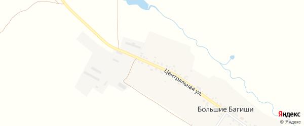 Центральная улица на карте деревни Большие Багиши с номерами домов