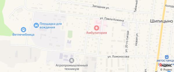 Улица Лермонтова на карте поселка Шипицыно с номерами домов
