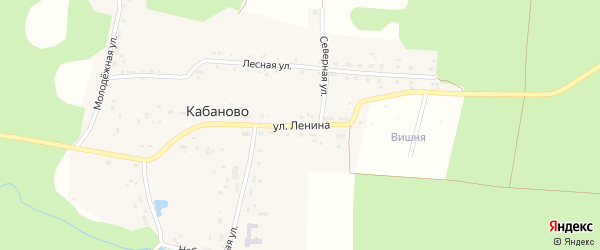 Улица Ленина на карте поселка Кабаново с номерами домов