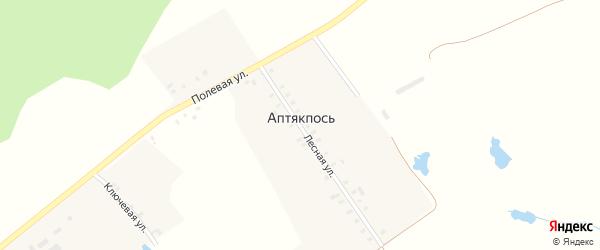 Полевая улица на карте деревни Аптякпоси с номерами домов