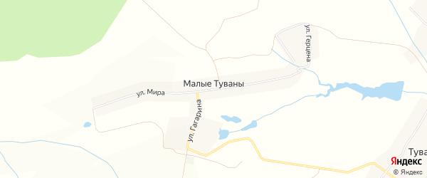 Карта деревни Малые Туваны в Чувашии с улицами и номерами домов