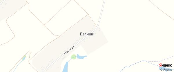 Новая улица на карте выселков Багиши с номерами домов