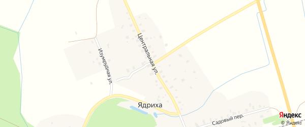 Центральная улица на карте деревни Ядрихи с номерами домов