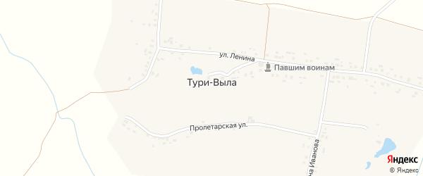 Улица К.Иванова на карте деревни Тури-Вылы с номерами домов