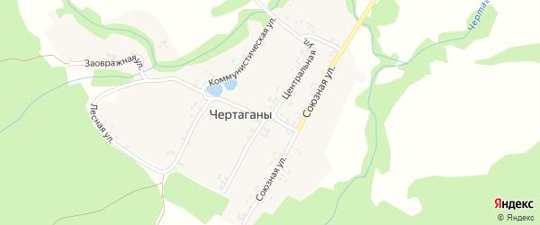 Центральная улица на карте деревни Чертаганы с номерами домов