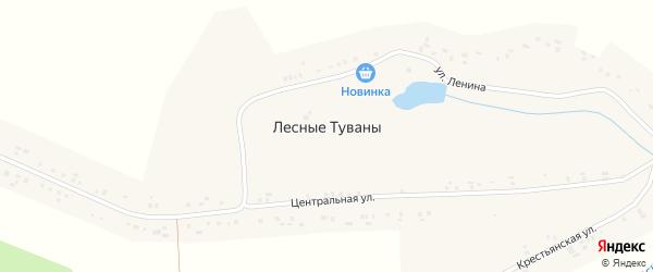 Центральная улица на карте деревни Лесные Туваны с номерами домов