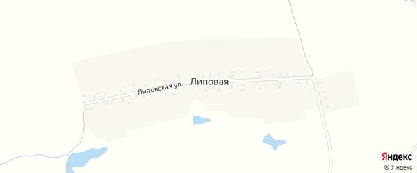 Липовская улица на карте Липовой деревни с номерами домов