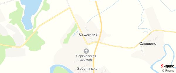 Карта деревни Студенихи в Архангельской области с улицами и номерами домов