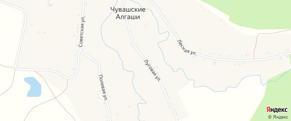 Луговая улица на карте деревни Чувашские Алгаши с номерами домов