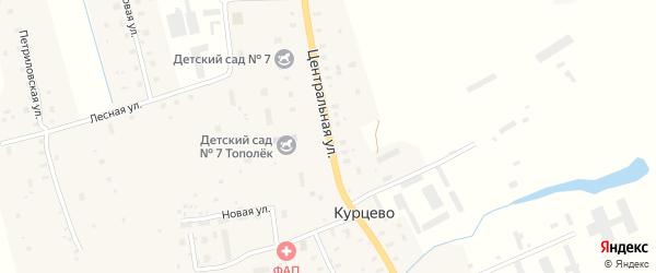 Центральная улица на карте деревни Курцево с номерами домов