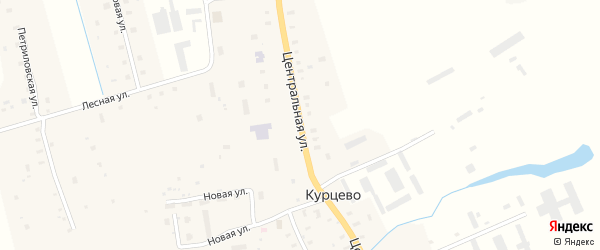 Центральная улица на карте садового некоммерческого товарищества СОТ Двинские Зори с номерами домов
