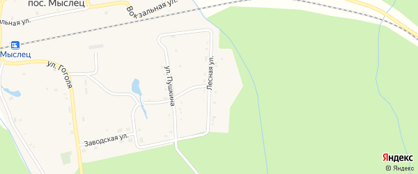 Лесная улица на карте поселка Мыслеца с номерами домов