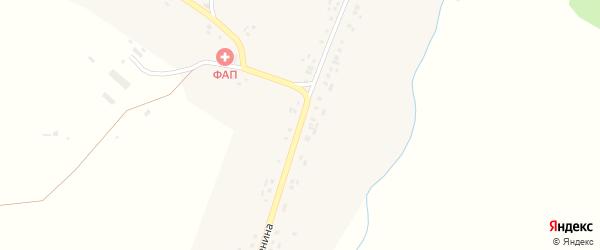 Улица Ленина на карте села Большей Вылы с номерами домов