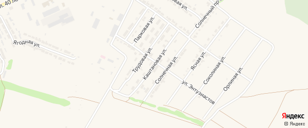 Каштановая улица на карте Алатыря с номерами домов
