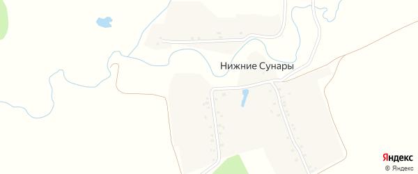Улица Большая Родня на карте деревни Нижние Сунары с номерами домов