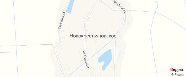 Заречная улица на карте Новокрестьяновского села с номерами домов
