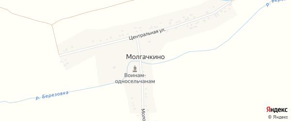 Центральная улица на карте деревни Молгачкино с номерами домов