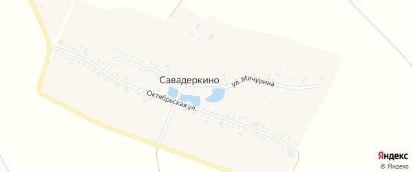 Улица Мичурина на карте деревни Савадеркино с номерами домов