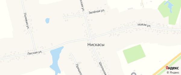 Центральная улица на карте деревни Нискасы с номерами домов