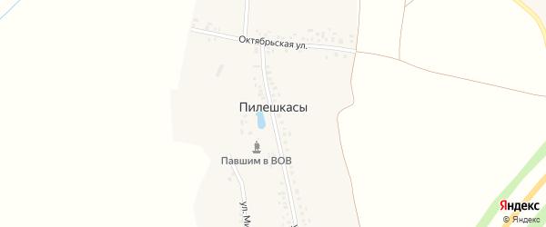 Октябрьская улица на карте деревни Пилешкас с номерами домов
